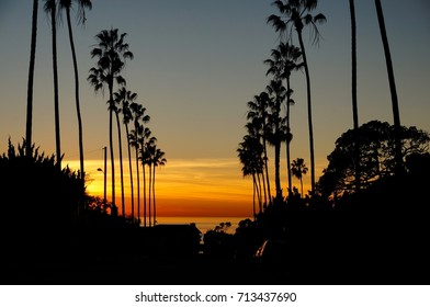 Classic San Diego sunset with palm tree silhouettes
