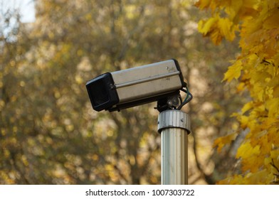 Classic security camera in fall. Surveillance cctv camera in street. Yellow leaves on background.