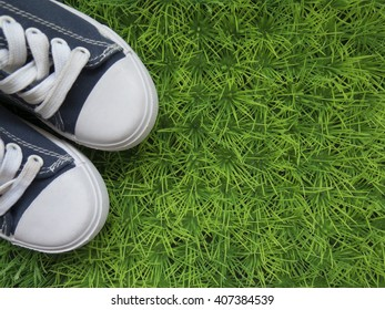 Classic sneakers on the green lawn