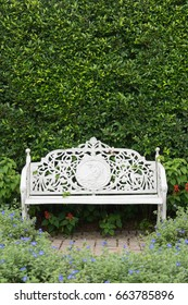 classic style white steel chair with green tree background in garden