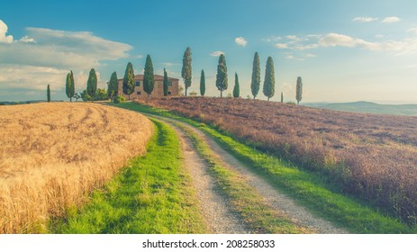 Classic Tuscan views around Pienza, Italy