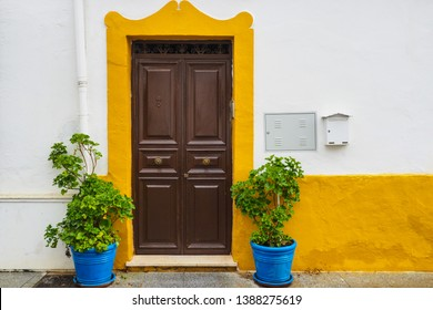 A classic view of door with small plant decoration.