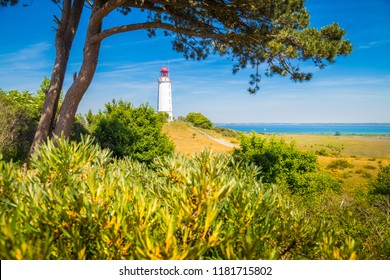 Classic view of famous Lighthouse Dornbusch on the beautiful island Hiddensee with blooming flowers in summer, Baltic Sea, Mecklenburg-Vorpommern, Germany