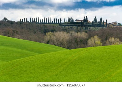 Classic view of rolling green fields in Tuscany