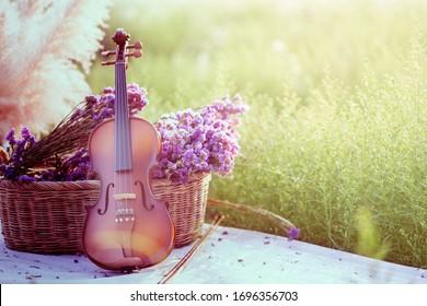 classic violin in flower garden
