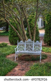 Classic white iron outdoor settee furniture sitting in front of a tree on a circular walkway.
