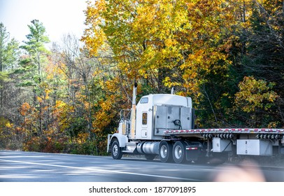 Classic white long hauler big rig industrial semi truck tractor with low cab and empty flat bed semi trailer driving on the autumn road with yellow maples to warehouse for the next load