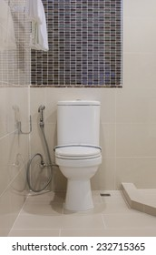 classic white toilet bowl in bathroom at home