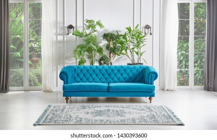 Classic white wall background, blue armchair windows and garden view, furniture detail with vase of green plant. Carpet on the parquet style. Home interior living room.