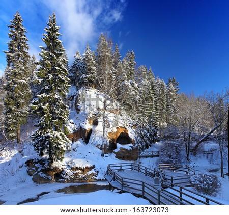 9de3d10c3bee Classic Winter Scenic Landscape Forest Snow Stock Photo (Edit Now ...