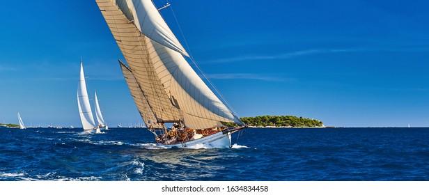 Classic yachts under full sail at the regatta. Sailing  race