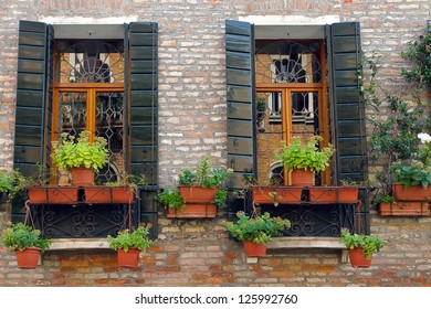Classical european residential window with shutters and flowers in pots