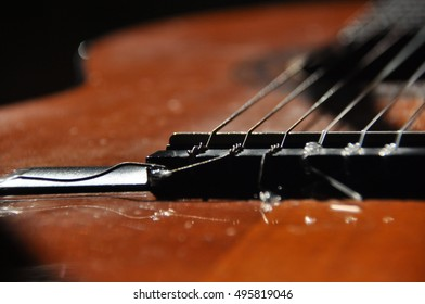 Classical guitar. Issuing a stringed instrument sounds. Fretboard, strings and resonation