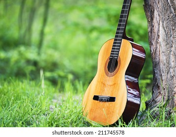 Classical guitar leaning against tree in park