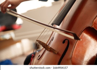 Classical instruments in a symphony orchestra. Cellist practices intensely in this close up high resolution photo of strings, cello, and bow