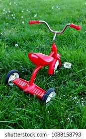 Classical red tricycle on the green grass