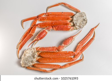 claw of a snow crab on a white background