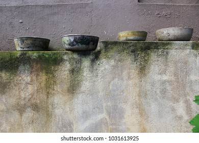 Clay pots on a rough, mossy cement wall