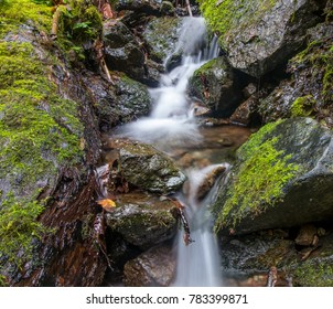 Clean, clear water flowing through moss covered rocks in the pacific northwest. Taken on Humbug Mountain on the Oregon Coast on 12/23/2017 in the USA.