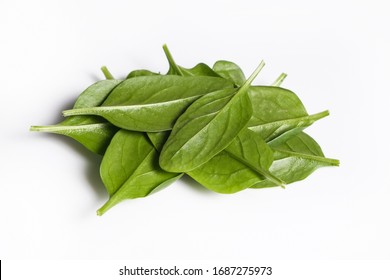 Clean eating concept. Heap of ripe juicy freshly picked organic baby spinach greens isolated on white background. Healthy diet for spring summer detox. Vegan raw food. Close up.