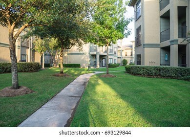 Clean lawn and tidy oak trees along the walk path through the typical apartment complex building in suburban area at Humble, Texas, US. Grassy backyard, sunset warm light.