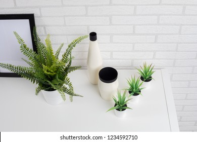 Clean modern home decoration plants and vases on the Shelf