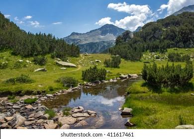 Clean Mountain River, Pirin Mountain, Bulgaria