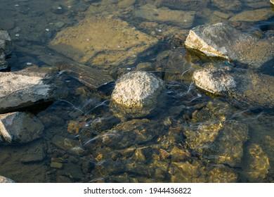 Clean pure water flowing with underwater rocks