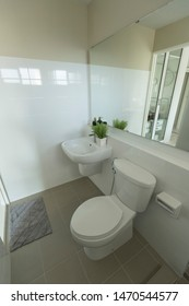 Clean restroom with white toilet, washbasin and mirror decoration with white ceramic color, Contemporary style washroom.