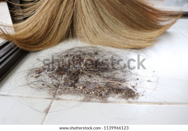 Clean Roomsweep Floorfor Maiddust Hairs Place Stock Photo Edit