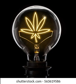 Clean and shiny lightbulb with a weed leaf as a glowing wire.(series)