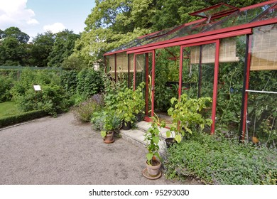 Clean and tidy greenhouse in lush surroundings.