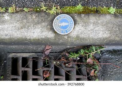 Clean Water Drain