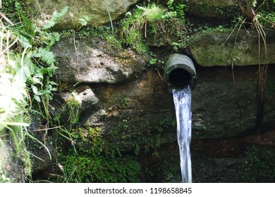 Clean water spring on mountains, drinking water