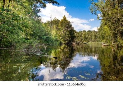The cleanest river in Poland - Krutynia, polish Masuria lake district, nature reserve.