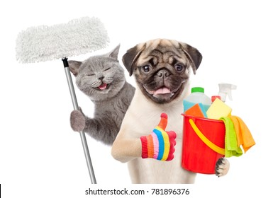 Cleaning concept. Cat and dog holds bucket with washing fluids and mop in paw and showing thumbs up. isolated on white background