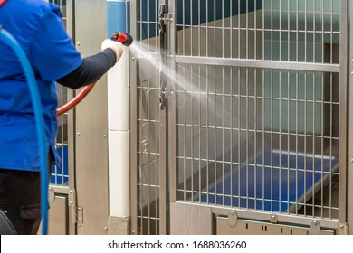 Cleaning the dog crates, cat beds and concrete floors with an orange pressure hose by a lady worker wearing a blue uniform inside an animal pet shelter for no kill adoptable and foster fur babies.