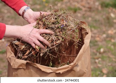 Cleaning up garden by picking up grass clippings and leaves with hands