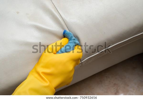 Fine Cleaning Leather Sofa Home Wet Towel Stock Photo Edit Now Spiritservingveterans Wood Chair Design Ideas Spiritservingveteransorg