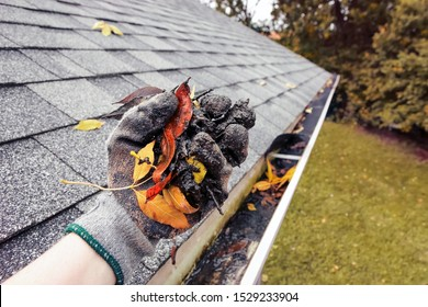 Cleaning leaves and debris out of rain gutters in autumn