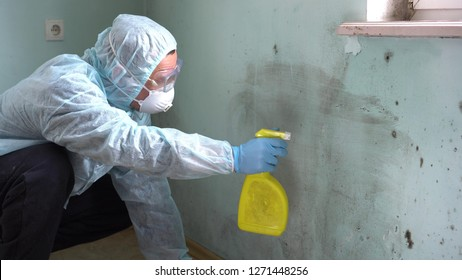 Cleaning up mold. A Man Cleaning Mold From Wall Using Spray Bottle And Sponge
