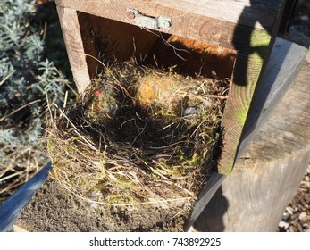 cleaning of a nesting box