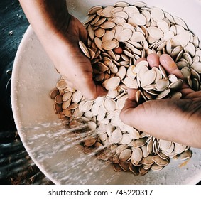 Cleaning pumpkin seeds for Halloween