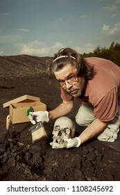 Cleaning of skull from place of find on summer terrain excavations on field location