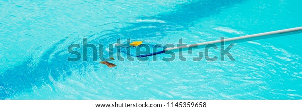 Cleaning Swimming Pool Cleaning Net Morning Stock Image ...