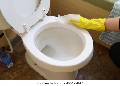 Cleaning the toilet rim. Healthy lifestyle, home, cleaning and organizing, everyday living concepts.