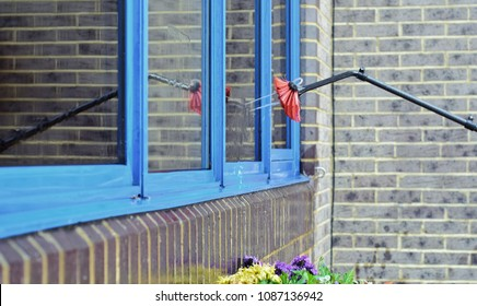 Cleaning windows with water fed aluminium telescopic extendable brush