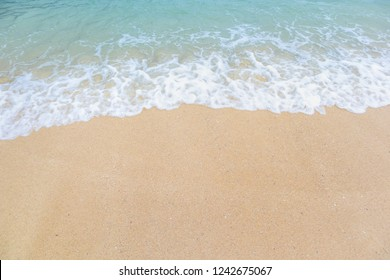 Clear beach and golden sand with beautiful waves are used as a background for the designs.
