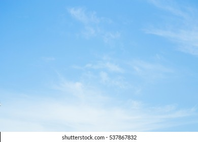 clear blue sky with plain white cloud with space for text