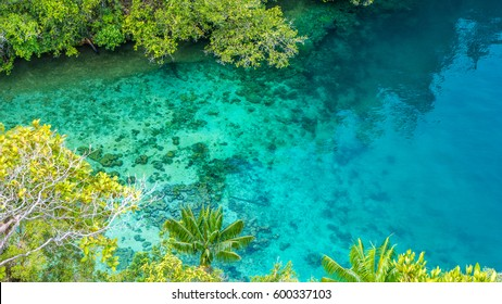 Clear Blue Water and Coral in Mangrove near Warikaf Homestay, Kabui Bay, Passage. Gam Island, West Papuan, Raja Ampat, Indonesia